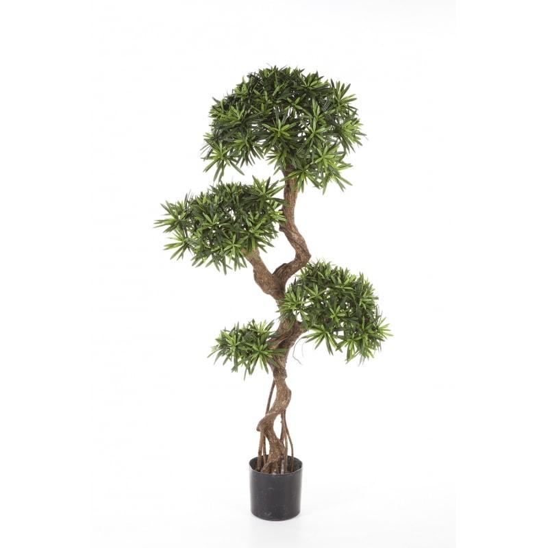 sztuczny-podocarpus-800x800