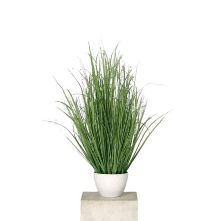 trawa-z-kwiatami