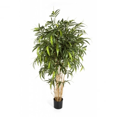 naturalny bambus