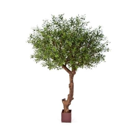 Sztuczne Drzewo Oliwne Polly 270 cm