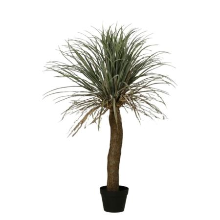 palma juka 96 cm