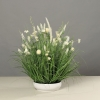kompozycja z polnych kwiatów biała