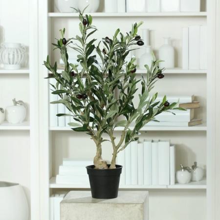 drzewko oliwne 68 cm