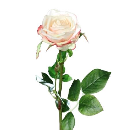 Róża 66 cm - Naturalna w Dotyku