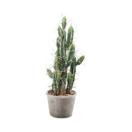 sztuczny kaktus 40 cm