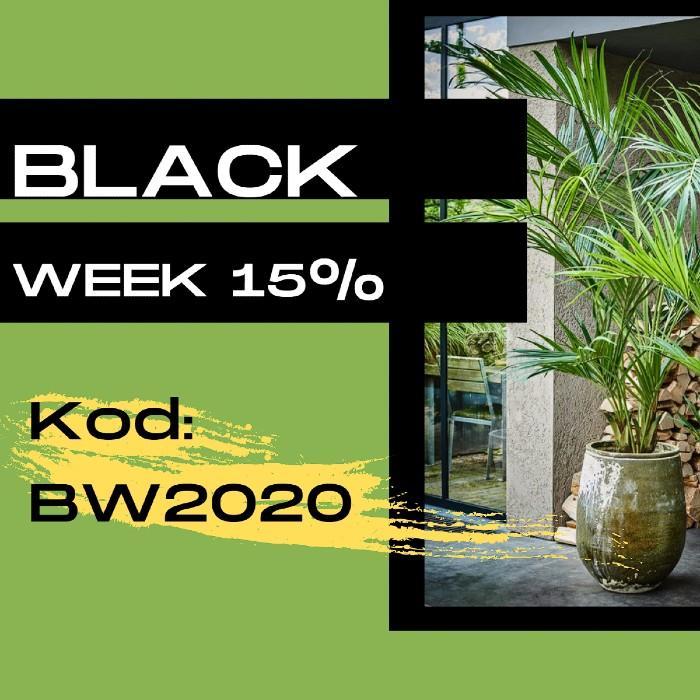 promocja black week