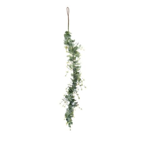 eukaliptus girlanda