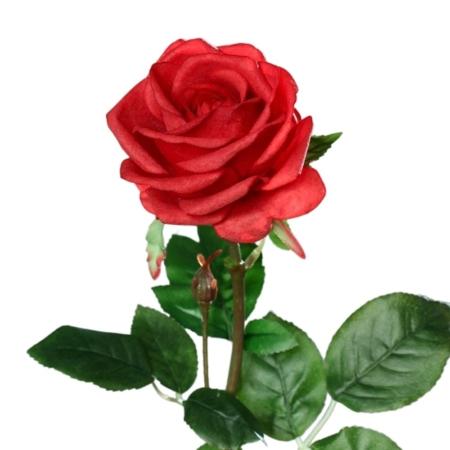 róża 66 cm naturalna w dotyku czerwona