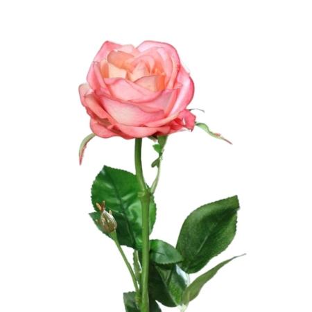 róża 66 cm naturalna w dotyku różowa