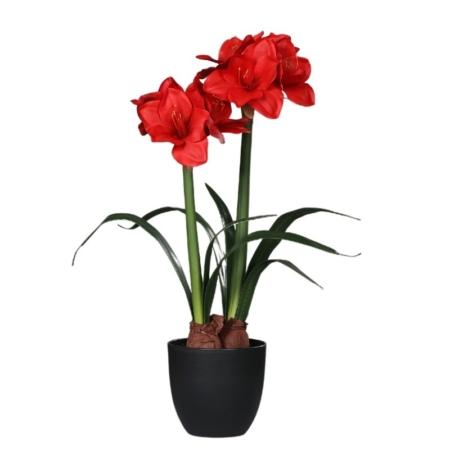 sztuczny amarylis czerwony 70 cm