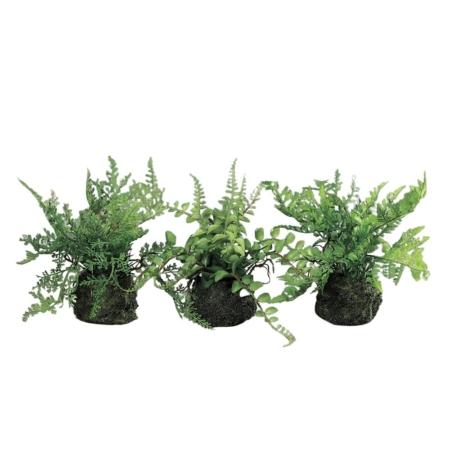 Sztuczne Miniaturowe Paprotki 19 cm