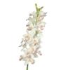 sztuczny storczyk orchidea cymbidium biały