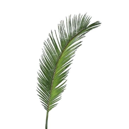 sztuczny liść cykas 60 cm