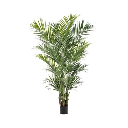sztuczna palma kentia 260 cm